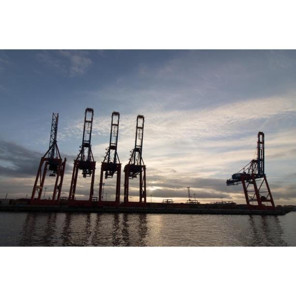 #Kräne im Hamburger #Hafen ⚓️ #cranes in the #port of Hamburg #river #harbour #ship #vessel #evening #water #elbe #hamburgerhafen #portofhamburg #germany 🇩🇪 #sightseeing