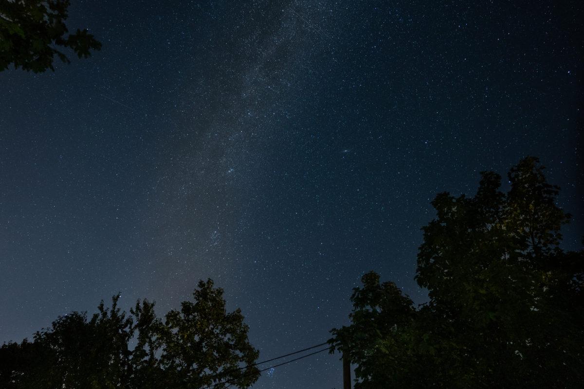 Milchstraße über Bäumen